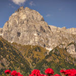 Besondere Urlaubsmomente im Nature Family Resort Feuerstein in Südtirol / Italien
